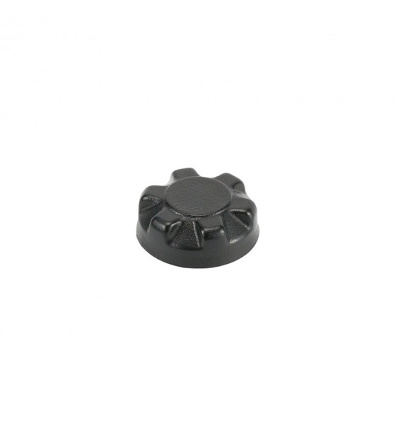 Cap air valve